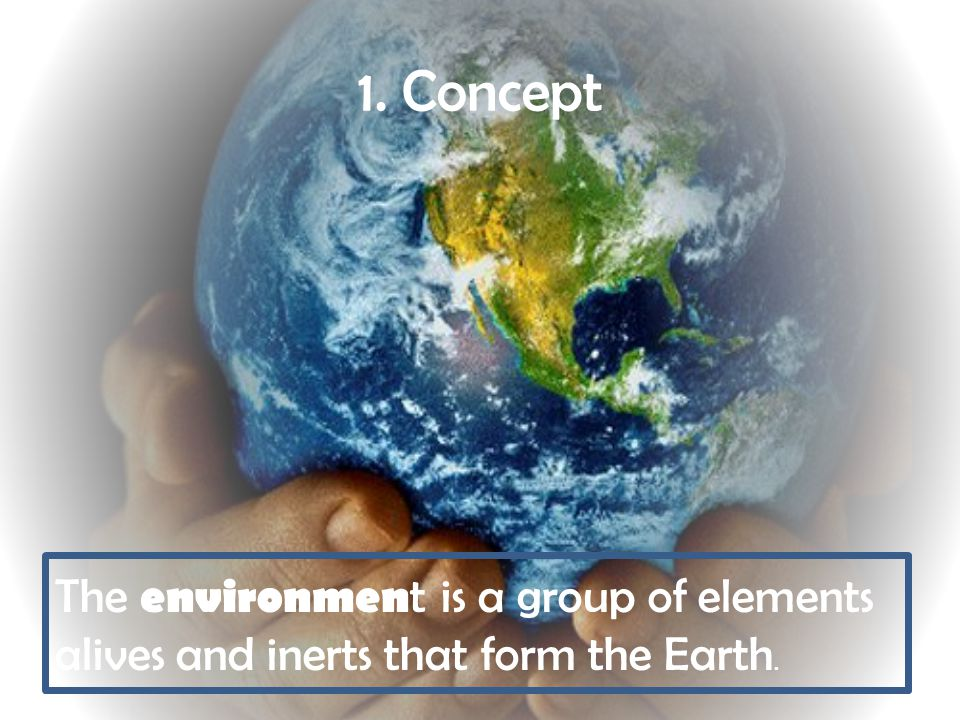 1. Concept The environmen t is a group of elements alives and inerts that form the Earth.