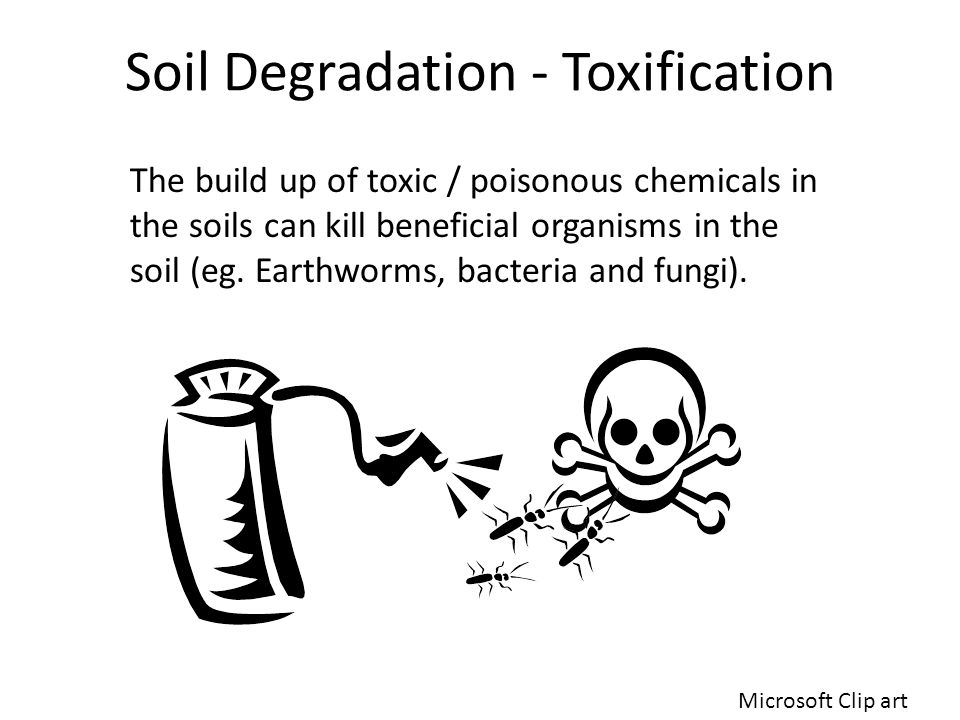 Soil Degradation - Toxification The build up of toxic / poisonous chemicals in the soils can kill beneficial organisms in the soil (eg. Earthworms, ba