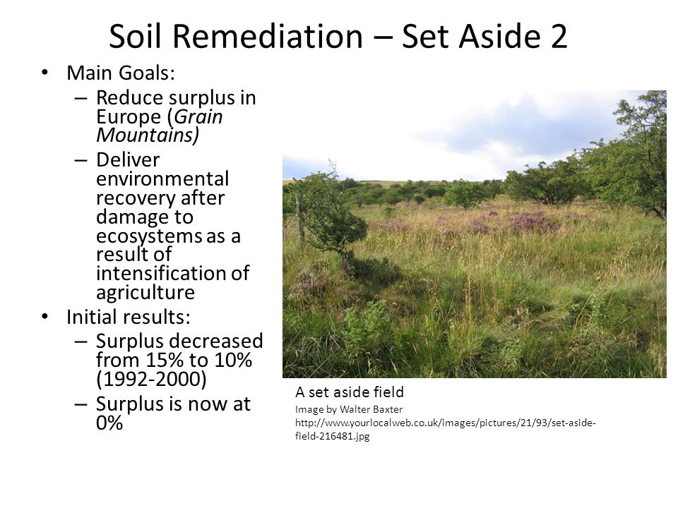 Soil Remediation – Set Aside 2 Main Goals: – Reduce surplus in Europe (Grain Mountains) – Deliver environmental recovery after damage to ecosystems as