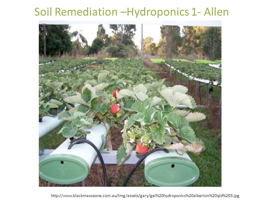 http://www.blackmaxozone.com.au/img/assets/gary/gel%20hydroponics%20alberton%20qld%203.jpg Soil Remediation –Hydroponics 1- Allen