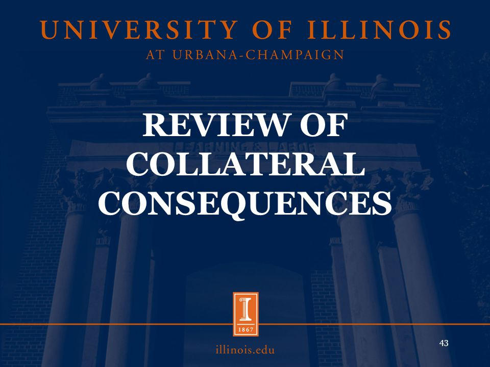 REVIEW OF COLLATERAL CONSEQUENCES 43