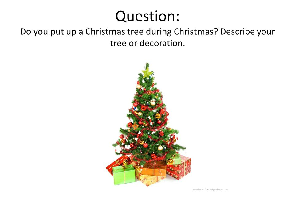 Question: Do you put up a Christmas tree during Christmas Describe your tree or decoration.