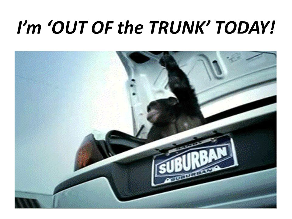I'm 'OUT OF the TRUNK' TODAY!