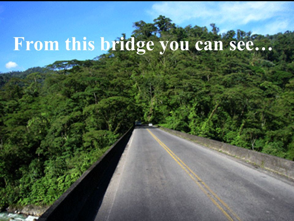 From this bridge you can see…