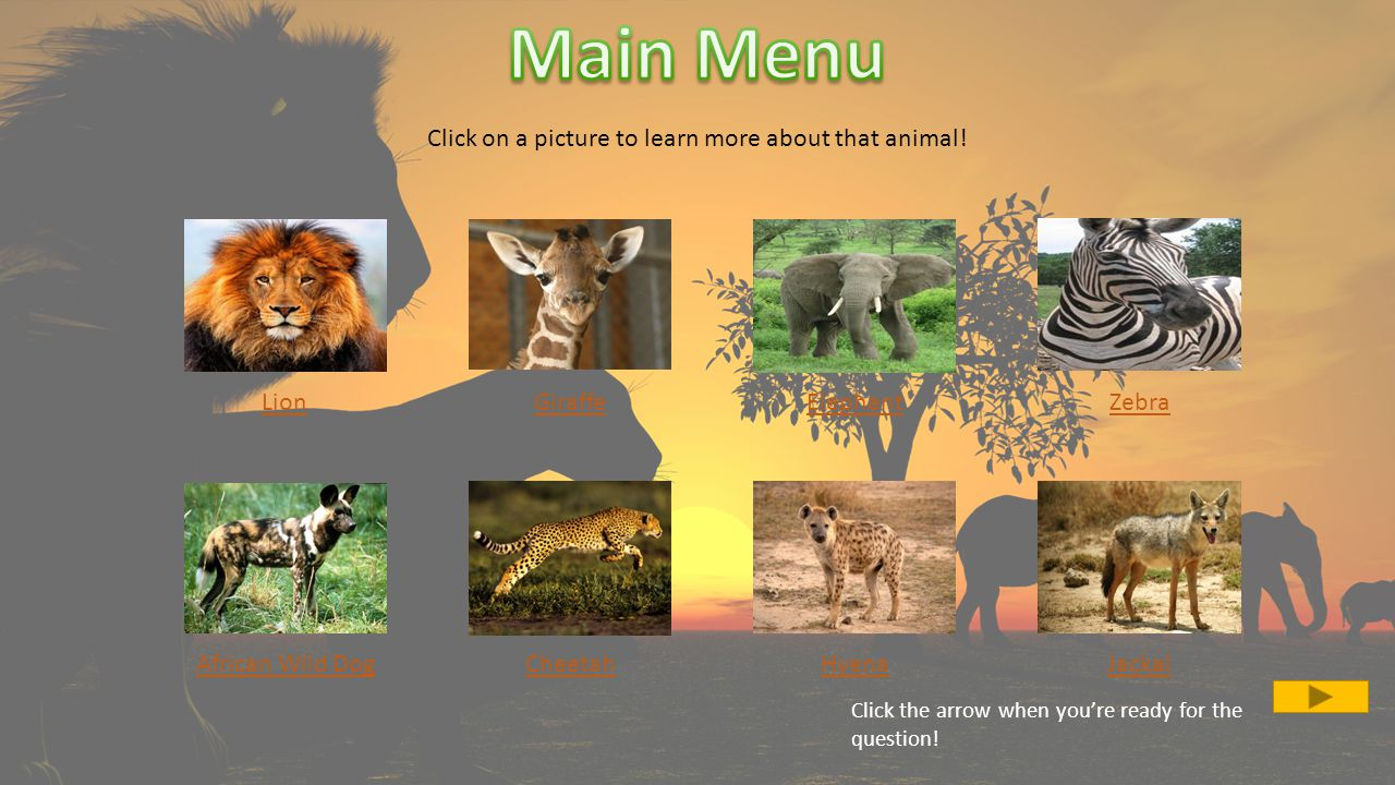 The cheetah is not the tallest land mammal, however it is the fastest land mammal! Try Again!