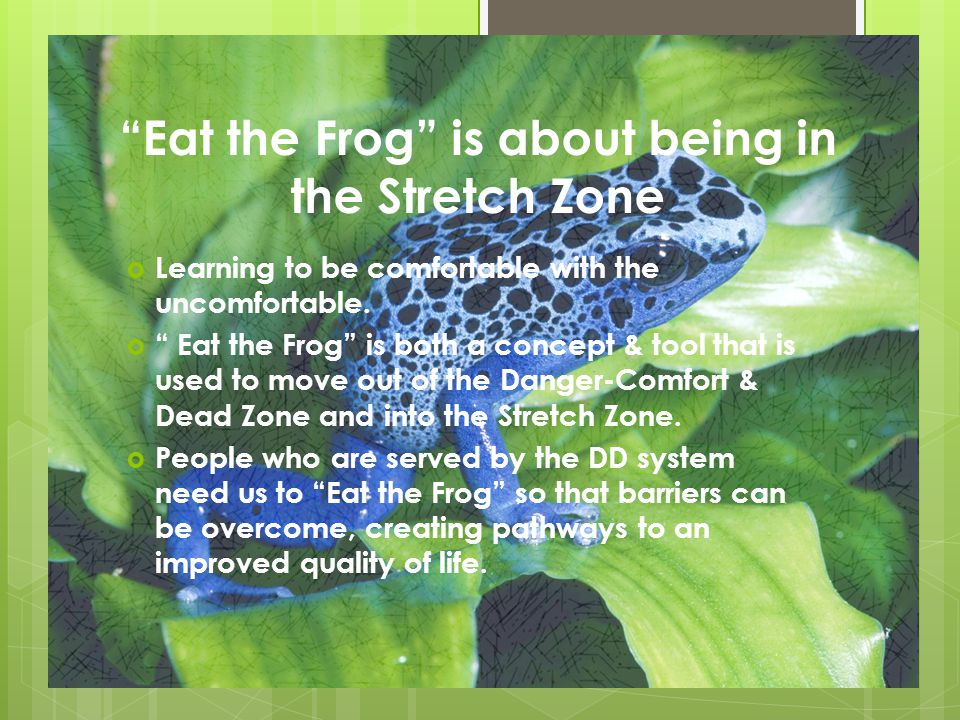 Eat the Frog is about being in the Stretch Zone  Learning to be comfortable with the uncomfortable.