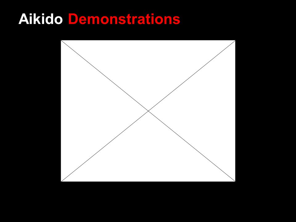 Aikido Demonstrations