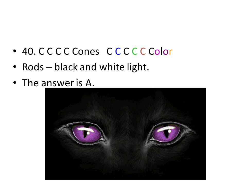 40. C C C C Cones C C C C C Color Rods – black and white light. The answer is A.