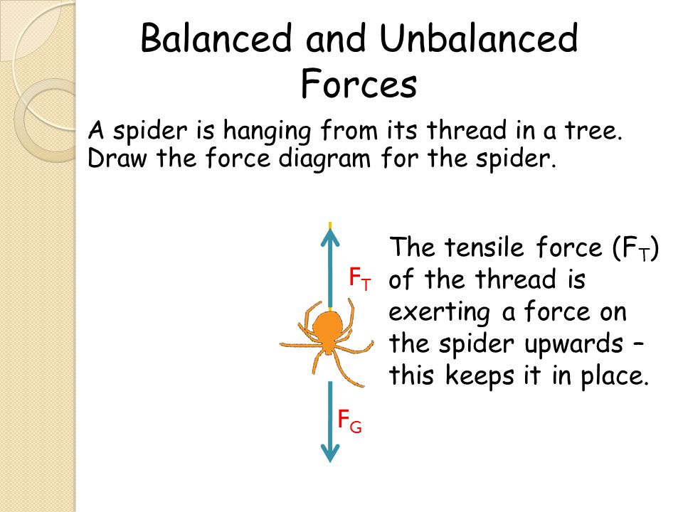 A spider is hanging from its thread in a tree. Draw the force diagram for the spider. FGFG FTFT The tensile force (F T ) of the thread is exerting a f