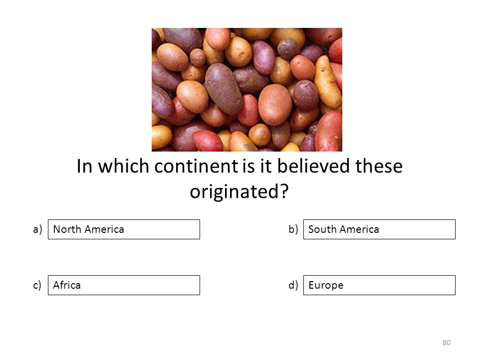 In which continent is it believed these originated? a) c) b) d) South America AfricaEurope North America 80