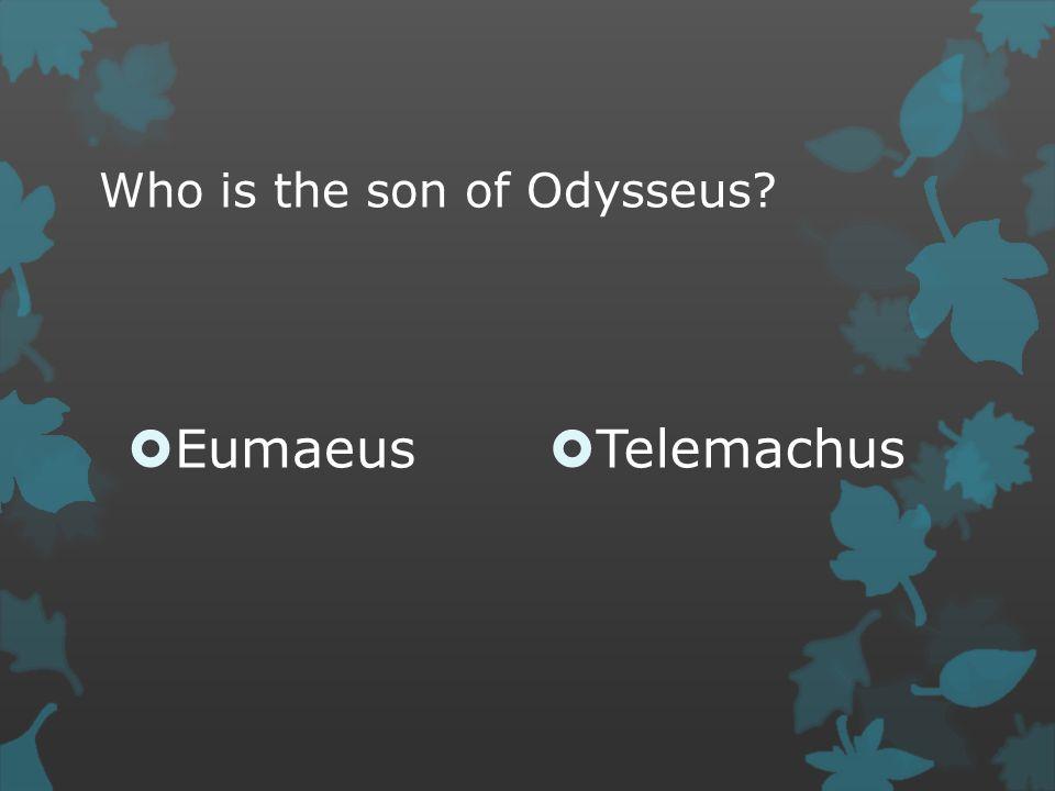 Who is the son of Odysseus  Eumaeus  Telemachus