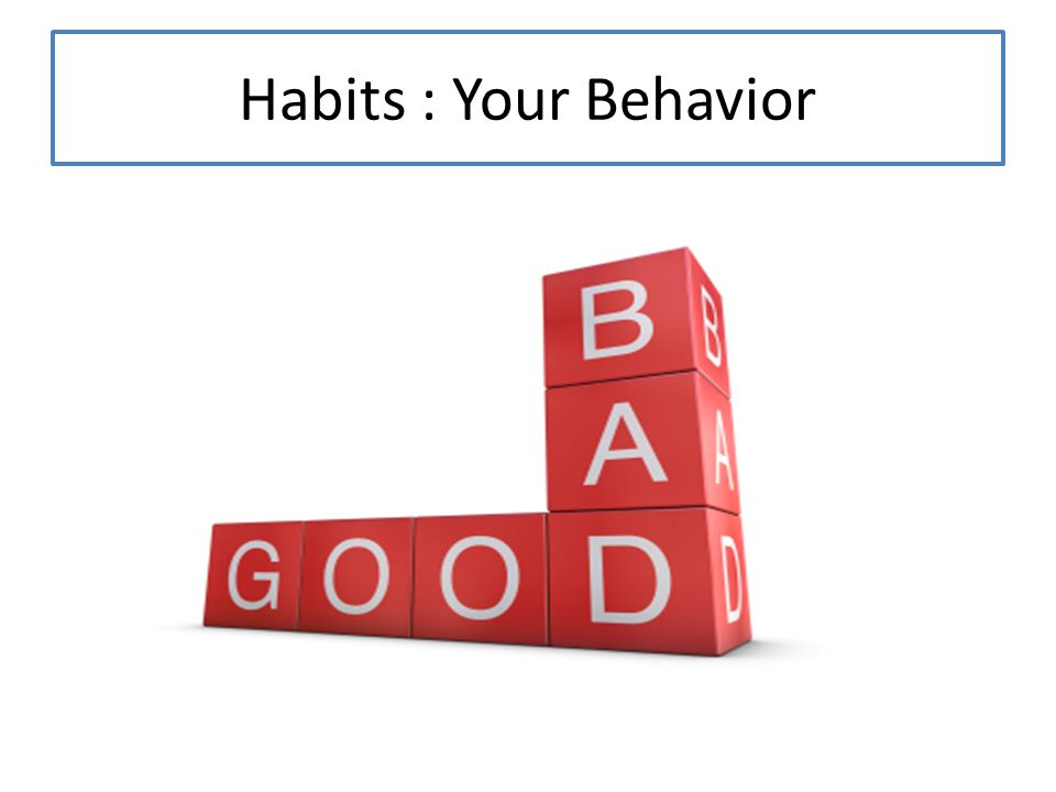 Habits : Your Behavior