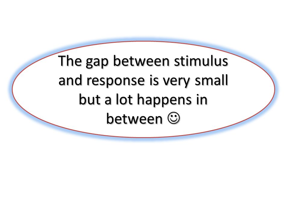 The gap between stimulus and response is very small but a lot happens in between The gap between stimulus and response is very small but a lot happens in between