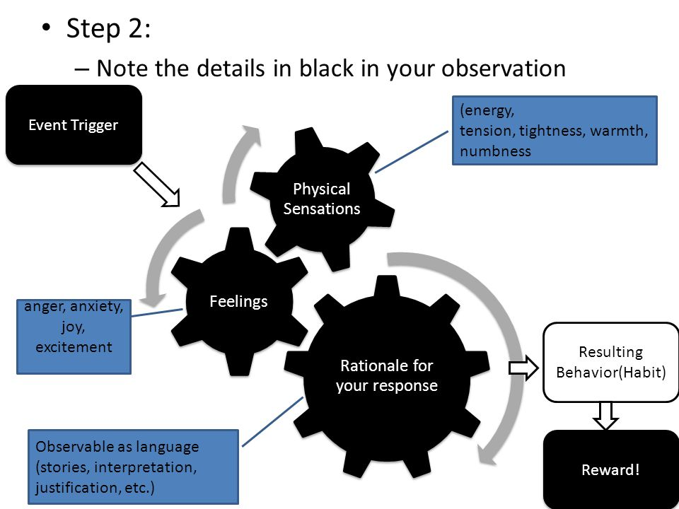 Step 2: – Note the details in black in your observation Event Trigger Resulting Behavior(Habit) (energy, tension, tightness, warmth, numbness anger, anxiety, joy, excitement Observable as language (stories, interpretation, justification, etc.) Reward!