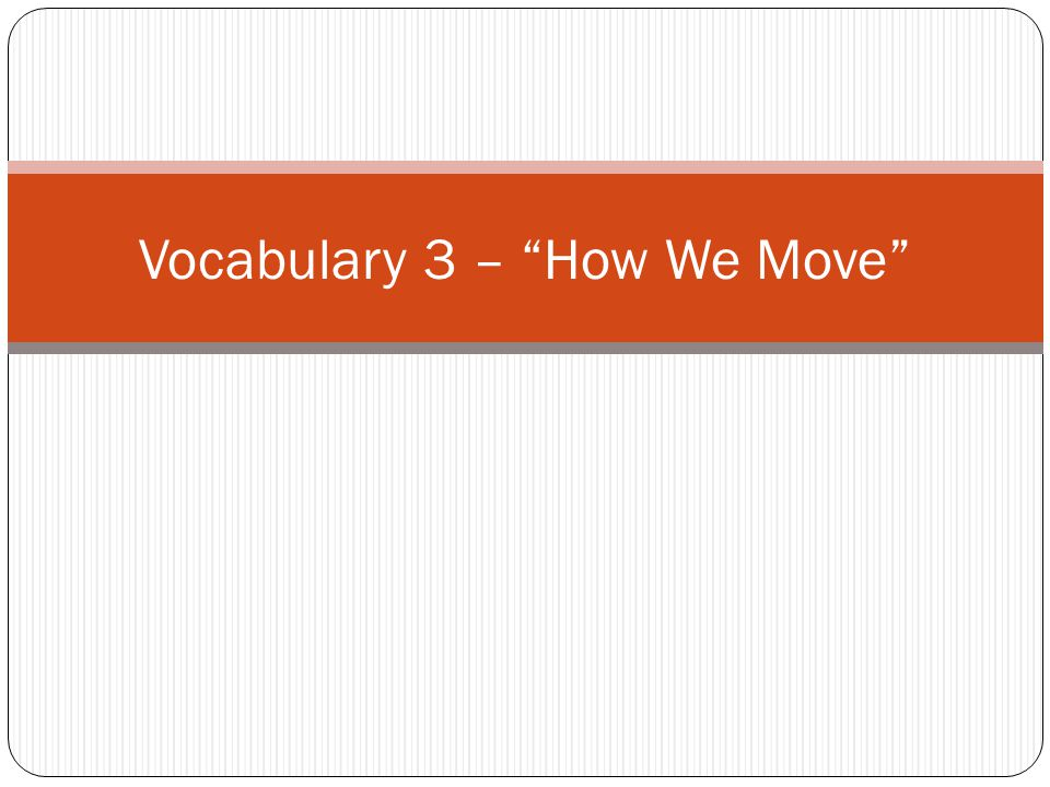 Vocabulary 3 – How We Move