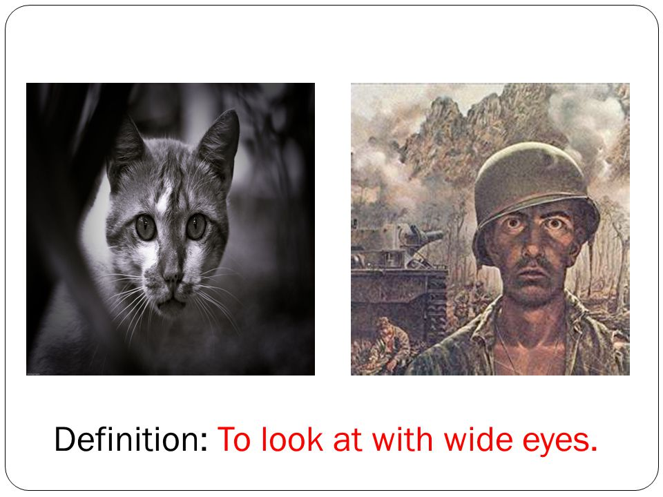 Definition: To look at with wide eyes.
