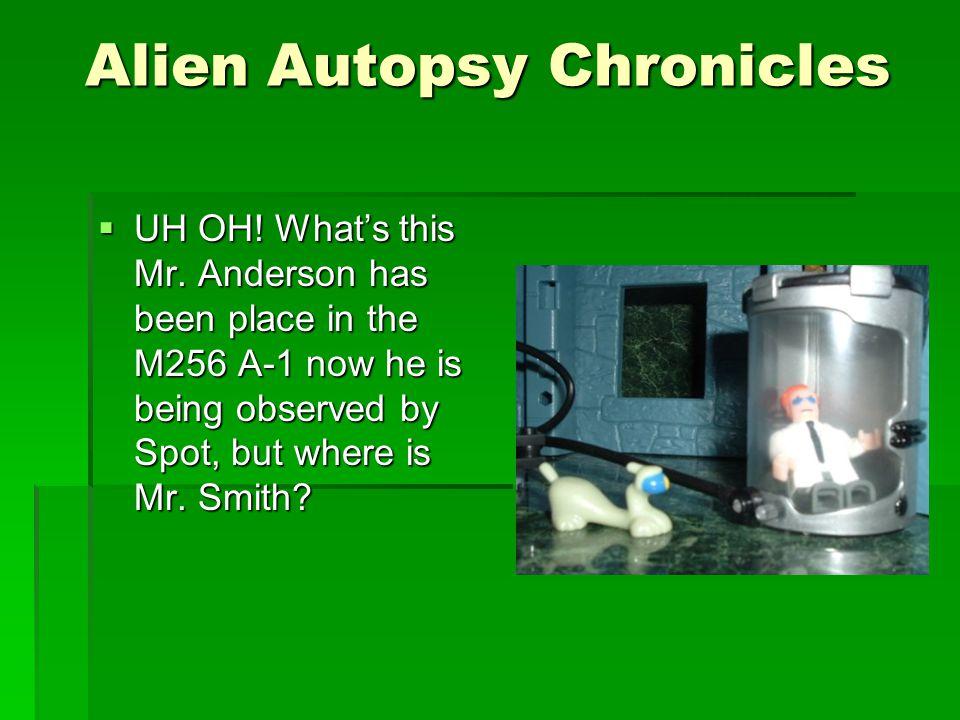 Alien Autopsy Chronicles  Mr.
