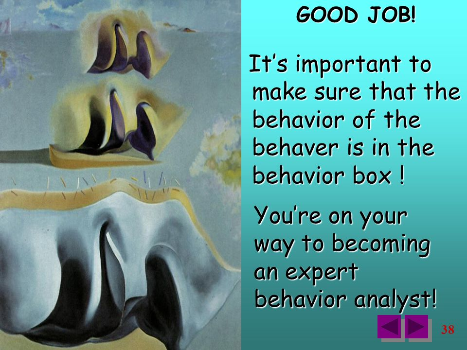 38 It's important to make sure that the behavior of the behaver is in the behavior box .