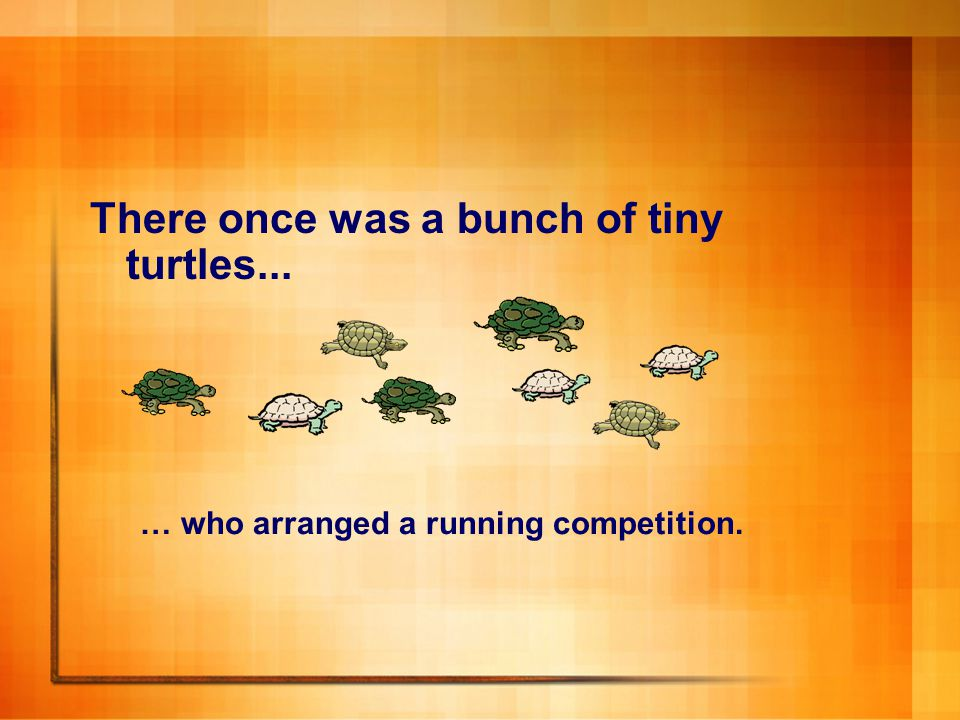 There once was a bunch of tiny turtles... … who arranged a running competition.