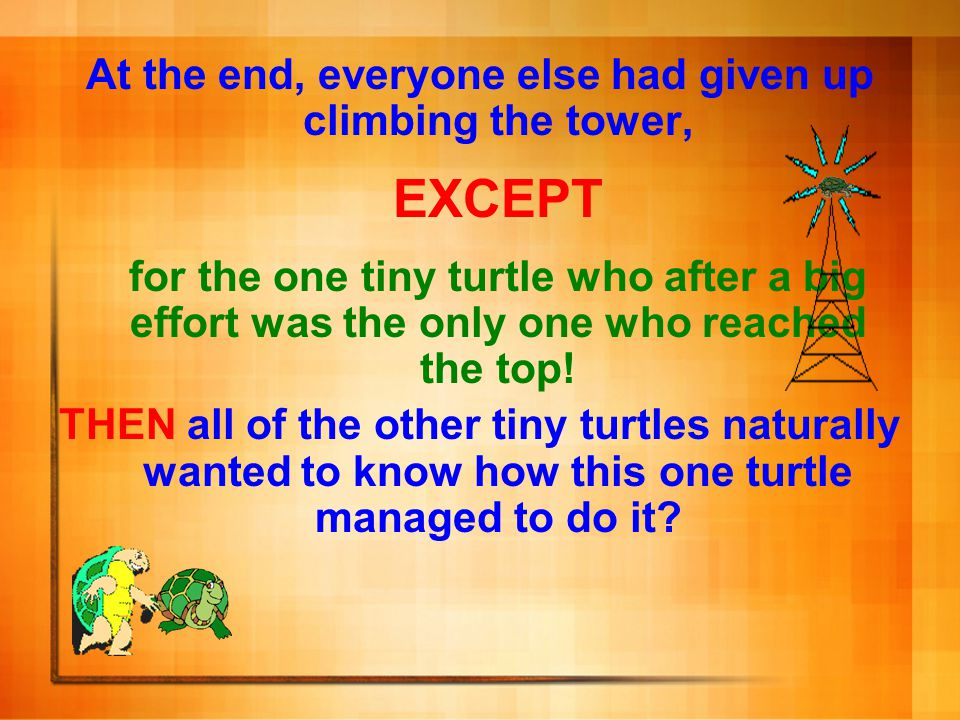 At the end, everyone else had given up climbing the tower, EXCEPT for the one tiny turtle who after a big effort was the only one who reached the top!