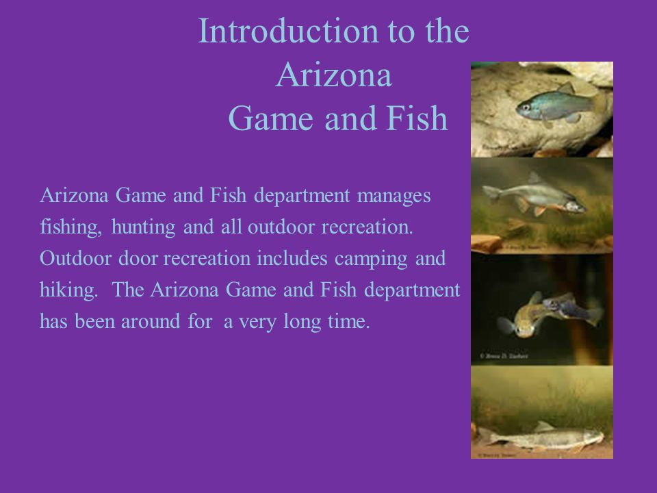 In partnership with Shelly Shepherd by Charlotte Arizona Game and Fish Department