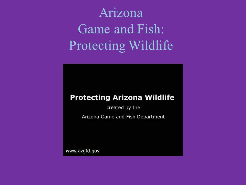 Arizona Game and Fish: Protecting Wildlife