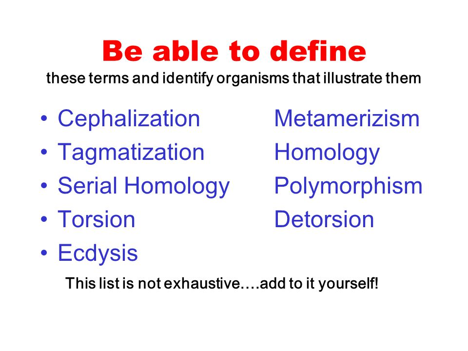 Be able to define these terms and identify organisms that illustrate them CephalizationMetamerizism TagmatizationHomology Serial HomologyPolymorphism
