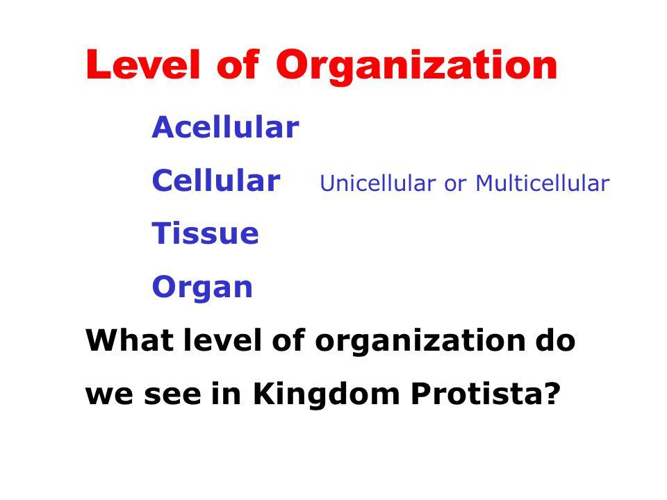 Level of Organization Acellular Cellular Unicellular or Multicellular Tissue Organ What level of organization do we see in Kingdom Protista?