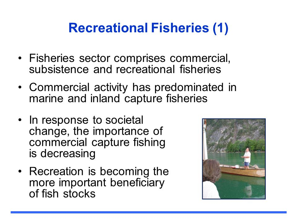 Issues for the future (1) Participation - necessary to understand types of anglers Conflicts between users - Horizontal conflicts between potential users, vertical conflicts between authorities and users Stocking - meeting the needs of environment and fishers can mean conflicting demands Non-native species - detrimental effects from the stocking of non-native fish for recreation Fishery collapse and sustainability - recreational fishing sector also has potential to negatively affect fish and fisheries Urban fisheries - access and opportunity