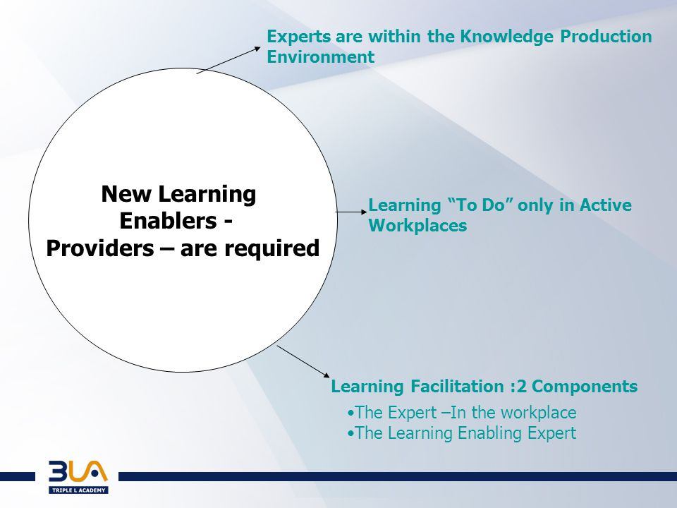 New Learning Enablers - Providers – are required Experts are within the Knowledge Production Environment Learning To Do only in Active Workplaces Learning Facilitation :2 Components The Expert –In the workplace The Learning Enabling Expert