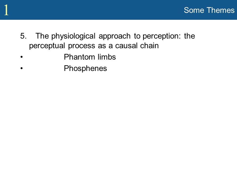 1 Some Themes 5. The physiological approach to perception: the perceptual process as a causal chain Phantom limbs Phosphenes
