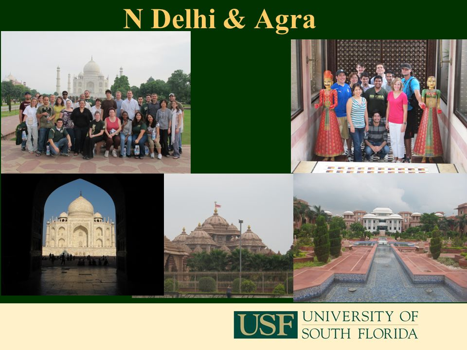 N Delhi & Agra 9