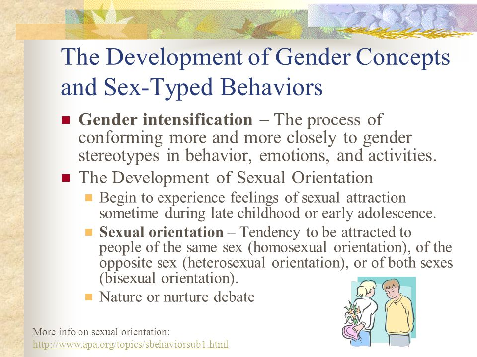 The Development of Gender Concepts and Sex-Typed Behaviors Gender intensification – The process of conforming more and more closely to gender stereoty