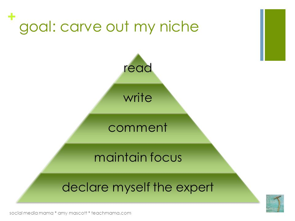 + goal: carve out my niche read write comment maintain focus declare myself the expert social media mama * amy mascott * teachmama.com