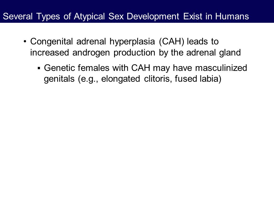 Several Types of Atypical Sex Development Exist in Humans Congenital adrenal hyperplasia (CAH) leads to increased androgen production by the adrenal g