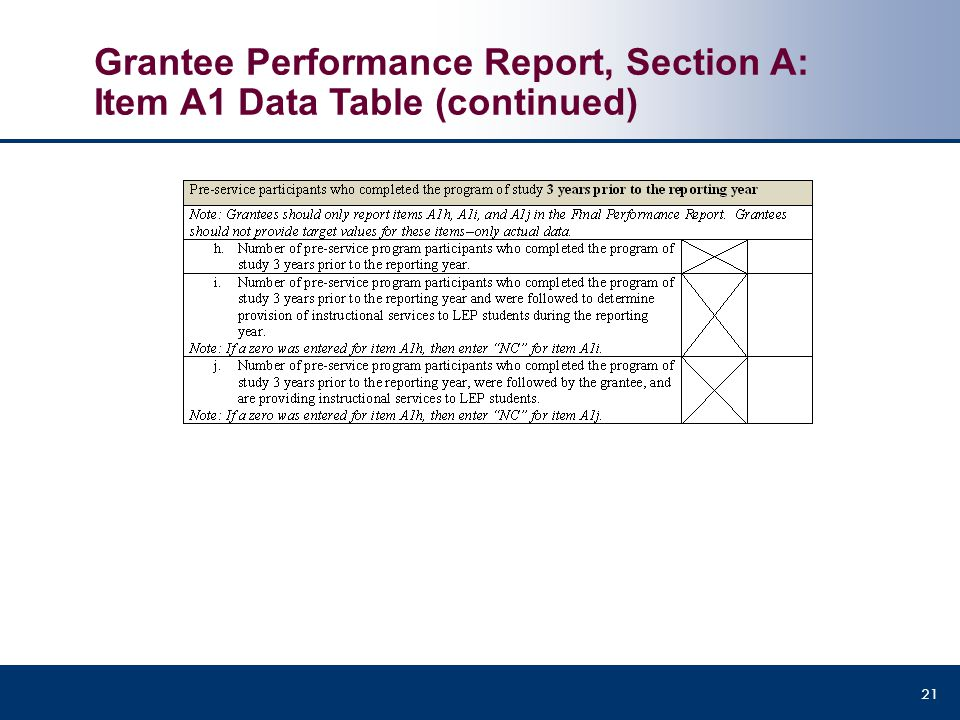 Grantee Performance Report, Section A: Item A1 Data Table (continued) 21