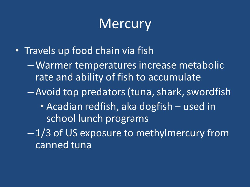 Mercury Travels up food chain via fish – Warmer temperatures increase metabolic rate and ability of fish to accumulate – Avoid top predators (tuna, shark, swordfish Acadian redfish, aka dogfish – used in school lunch programs – 1/3 of US exposure to methylmercury from canned tuna