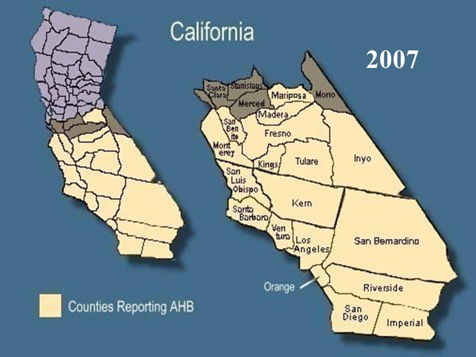 Ahb – California 2007