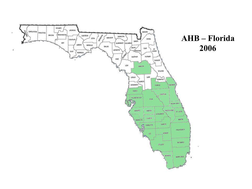 AHB – Florida 2006