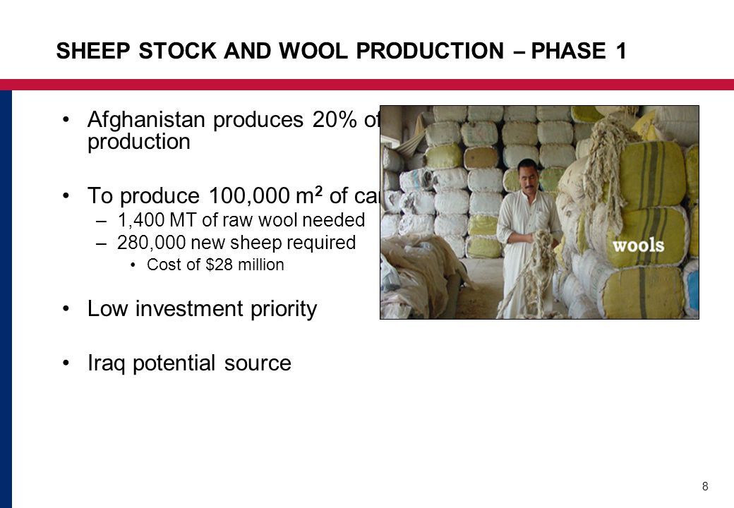 8 SHEEP STOCK AND WOOL PRODUCTION – PHASE 1 Afghanistan produces 20% of the wool needed for carpet production To produce 100,000 m 2 of carpet: –1,400 MT of raw wool needed –280,000 new sheep required Cost of $28 million Low investment priority Iraq potential source