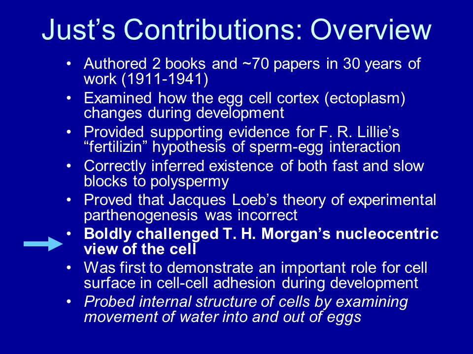 Just's Contributions: Overview Authored 2 books and ~70 papers in 30 years of work (1911-1941) Examined how the egg cell cortex (ectoplasm) changes during development Provided supporting evidence for F.