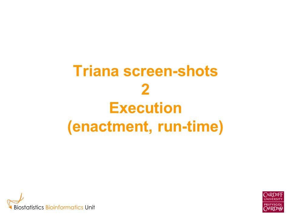 Triana screen-shots 2 Execution (enactment, run-time)