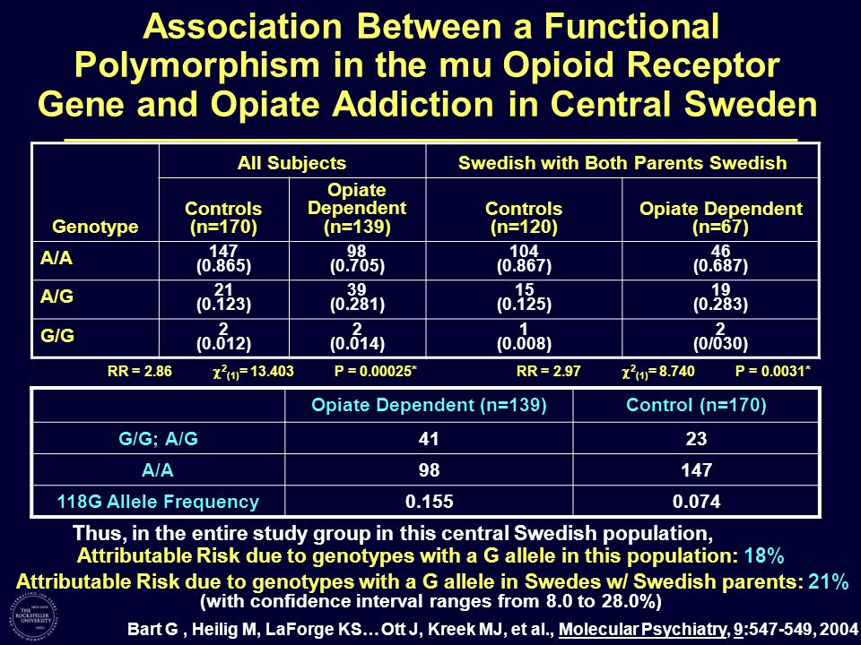 Association Between a Functional Polymorphism in the mu Opioid Receptor Gene and Opiate Addiction in Central Sweden Genotype All SubjectsSwedish with Both Parents Swedish Controls (n=170) Opiate Dependent (n=139) Controls (n=120) Opiate Dependent (n=67) A/A 147 (0.865) 98 (0.705) 104 (0.867) 46 (0.687) A/G 21 (0.123) 39 (0.281) 15 (0.125) 19 (0.283) G/G 2 (0.012) 2 (0.014) 1 (0.008) 2 (0/030) RR = 2.86  2 (1) = 13.403 P = 0.00025*RR = 2.97  2 (1) = 8.740 P = 0.0031* Bart G, Heilig M, LaForge KS… Ott J, Kreek MJ, et al., Molecular Psychiatry, 9:547-549, 2004 Attributable Risk due to genotypes with a G allele in this population: 18% Attributable Risk due to genotypes with a G allele in Swedes w/ Swedish parents: 21% (with confidence interval ranges from 8.0 to 28.0%) Thus, in the entire study group in this central Swedish population, Opiate Dependent (n=139)Control (n=170) G/G; A/G4123 A/A98147 118G Allele Frequency0.1550.074