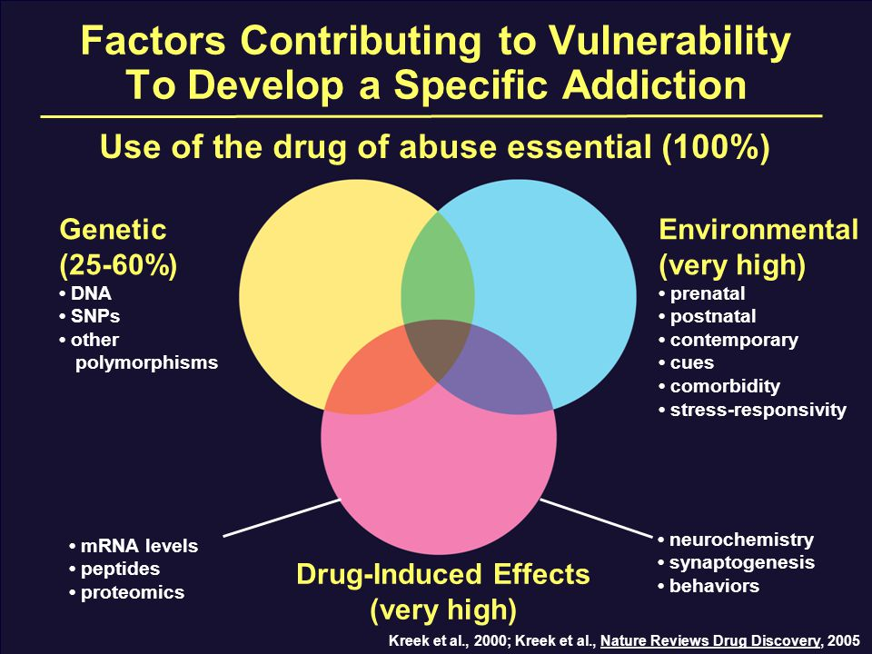 Factors Contributing to Vulnerability To Develop a Specific Addiction Use of the drug of abuse essential (100%) Genetic (25-60%) DNA SNPs other polymorphisms Drug-Induced Effects (very high) Environmental (very high) prenatal postnatal contemporary cues comorbidity stress-responsivity Kreek et al., 2000; Kreek et al., Nature Reviews Drug Discovery, 2005 mRNA levels peptides proteomics neurochemistry synaptogenesis behaviors