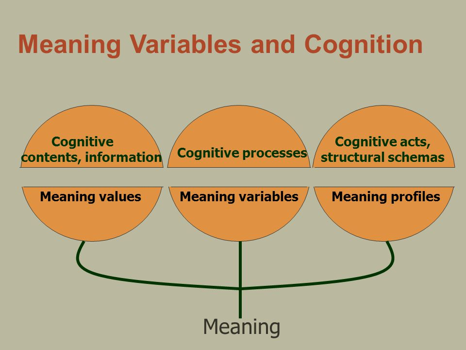 Meaning Variables and Cognition Cognitive contents, information Meaning values Cognitive processes Meaning variables Cognitive acts, structural schemas Meaning profiles Meaning