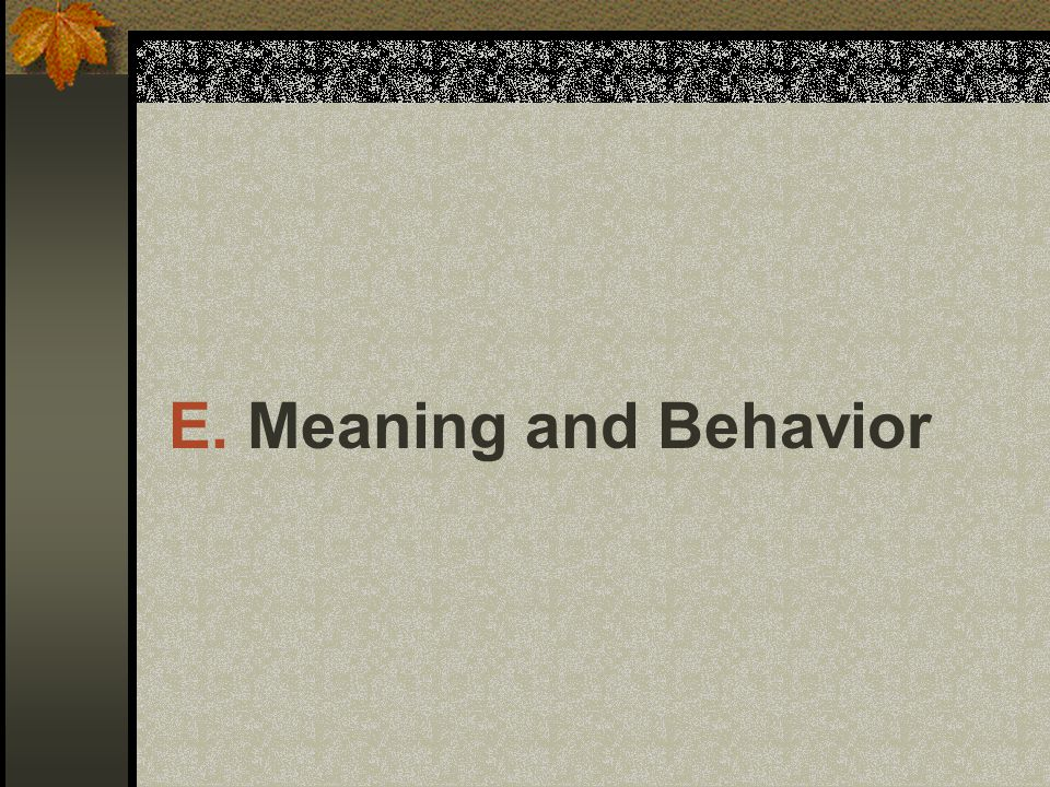 E. Meaning and Behavior