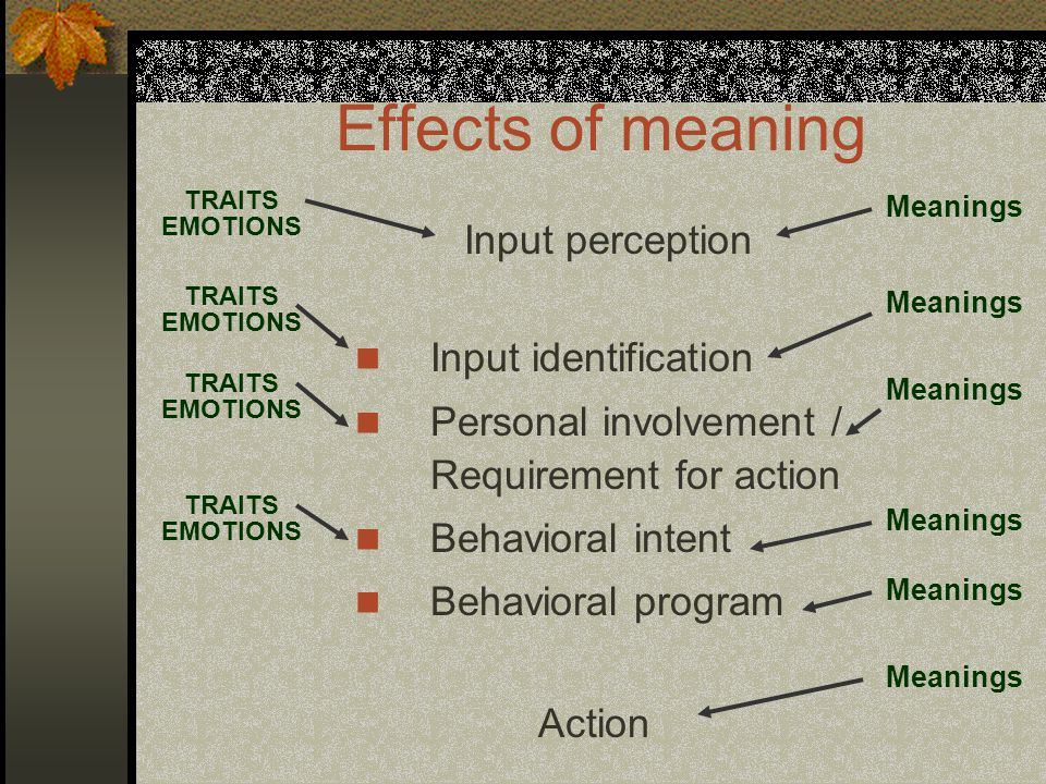 Effects of meaning Input perception Input identification Personal involvement / Requirement for action Behavioral intent Behavioral program Action TRAITS EMOTIONS Meanings TRAITS EMOTIONS