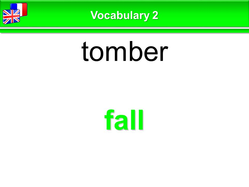 fall tomber Vocabulary 2