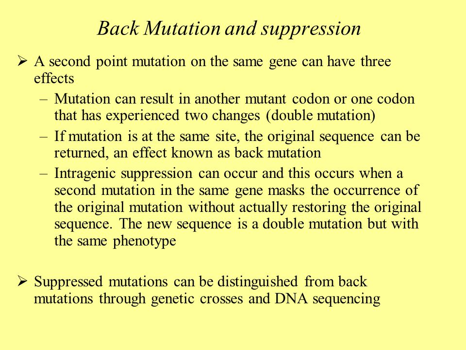 Back Mutation and suppression  A second point mutation on the same gene can have three effects –Mutation can result in another mutant codon or one codon that has experienced two changes (double mutation) –If mutation is at the same site, the original sequence can be returned, an effect known as back mutation –Intragenic suppression can occur and this occurs when a second mutation in the same gene masks the occurrence of the original mutation without actually restoring the original sequence.