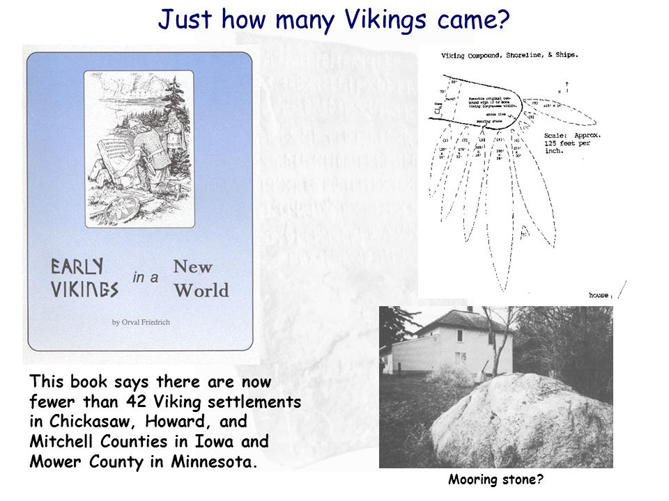 Just how many Vikings came.